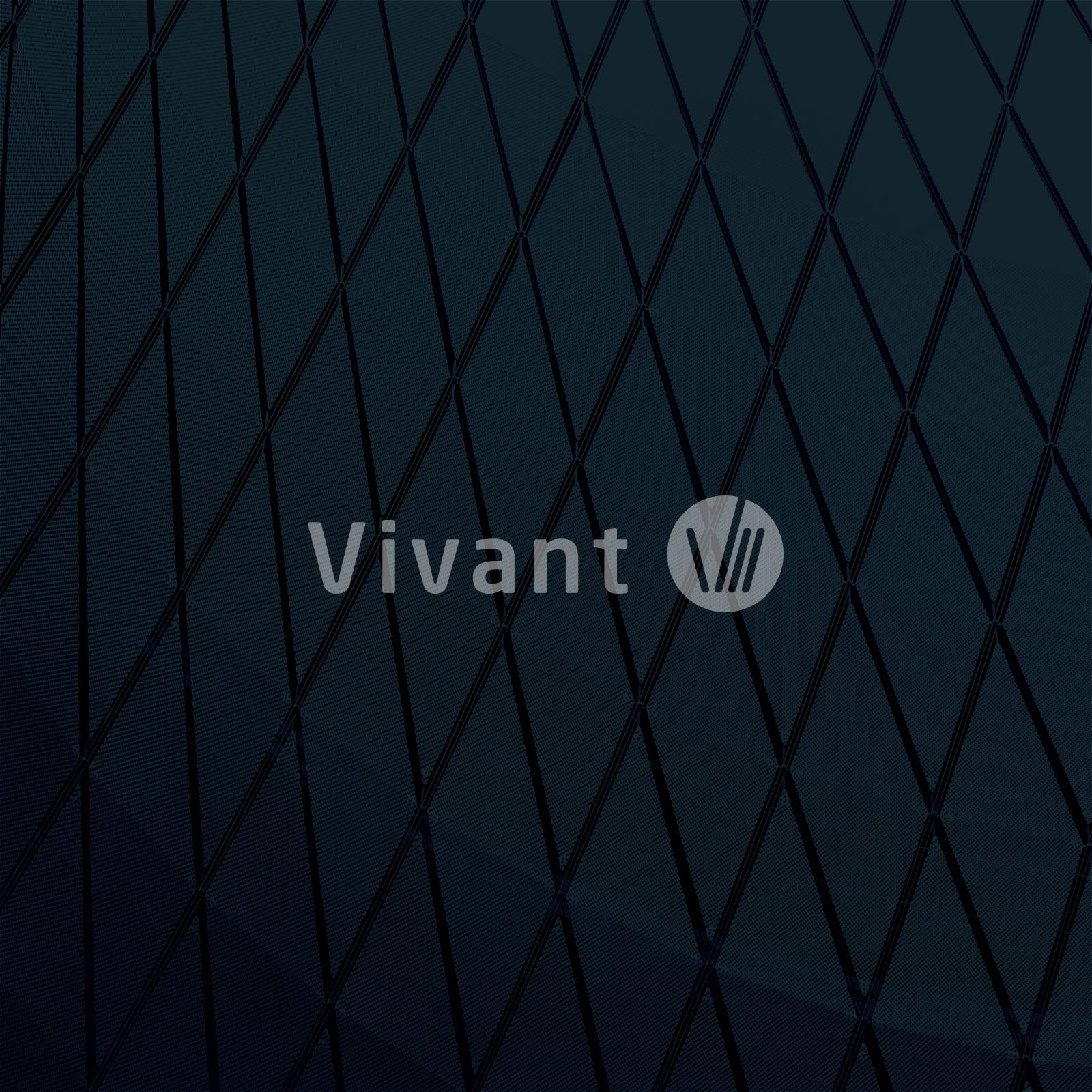 Read more about the article Vivant